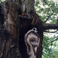 A ceramic ear by artist Garry Barker in the York Museum Gardens