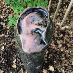 A ceramic ear by artist Garry Barker in the York Museum Gardens